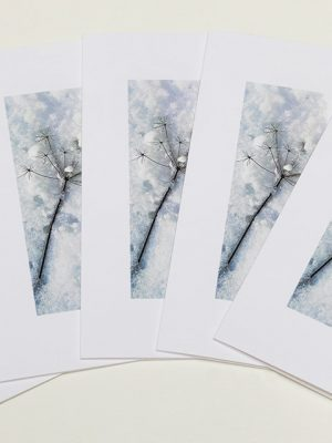 Greeting Card Packs