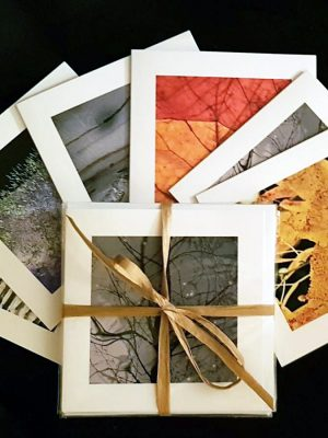 6 Square Card Pack